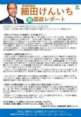 国政レポート燕1月JPG