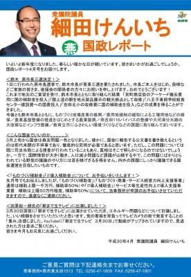 国政レポート燕_4月.pptx